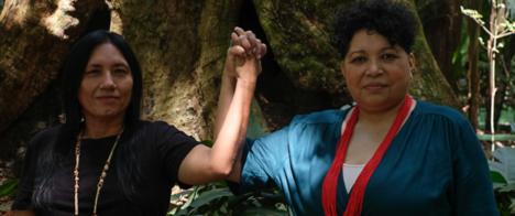 Fundadoras da Amazônia Real serão as homenageadas no 16º Congresso da Abraji