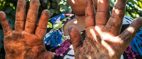 Thomson Reuters oferece curso gratuito sobre cobertura de trabalho escravo e escravidão moderna