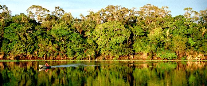 Portal Mundo Amazônia lança bolsas de reportagem