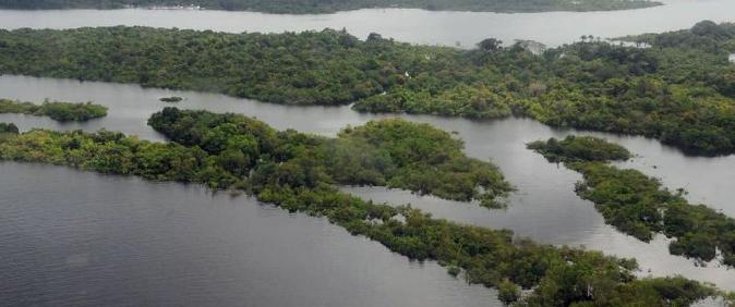 Conselho da Amazônia não explica valor arrecadado pela Operação Verde Brasil 2, em 2020